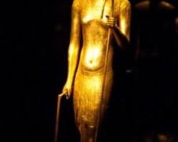 Tutankhamen Ha Man Boobs
